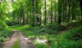 Randonnée Marche HARAMONT - en forêt de Retz_79_08_2019_vers Taillefontaine et Retheuil par les lisières - Photo 68