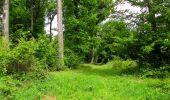Randonnée Marche COYOLLES - en forêt de Retz_78_les rayons du Rond Capitaine - Photo 136
