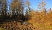 Trail Walk RETHEUIL - en forêt de Retz_76_dans les forêts de Retz et de Compiègne - Photo 32