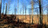 Trail Walk PIERREFONDS - en forêt de Compiègne_24_Tournantes sur le Voliard et sur la Fortelle_chaussée Brunehaut - Photo 119