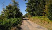 Trail Walk DAMPLEUX - en forêt de Retz_80_sur la Route Tortue et la Route Droite - Photo 251