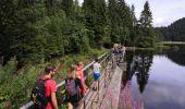 Trail Walk LA BRESSE - Lac de Lispach - Photo 1
