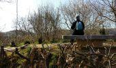 Randonnée Marche PAU - PAU  parc du chateau - Photo 5