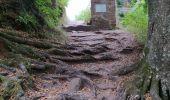 Randonnée Marche PHILIPPSBOURG - chateaux falckenstein - Waldeck - Photo 10