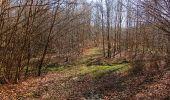 Trail Walk PIERREFONDS - en forêt de Compiègne_24_Tournantes sur le Voliard et sur la Fortelle_chaussée Brunehaut - Photo 60