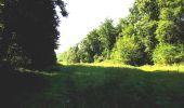 Randonnée A pied VILLERS-COTTERETS - le GR11A  dans la Forêt de Retz  - Photo 40
