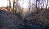Trail Walk PIERREFONDS - en forêt de Compiègne_24_Tournantes sur le Voliard et sur la Fortelle_chaussée Brunehaut - Photo 105