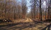 Trail Walk PIERREFONDS - en forêt de Compiègne_24_Tournantes sur le Voliard et sur la Fortelle_chaussée Brunehaut - Photo 84