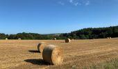 Randonnée Marche SAINT-POIS - Tours de la vallée de la sée - Photo 11