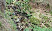 Trail Walk METZERAL - Steinabruck - Le Hohneck et ses 3 lacs Fischboedle, Altenweiher et Schiessrothried - Photo 55