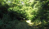 Randonnée Marche LONGPONT - en foret de Retz_ 41_Longpont_Vertes Feuilles_AR - Photo 100