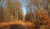 Trail Walk PIERREFONDS - en forêt de Compiègne_24_Tournantes sur le Voliard et sur la Fortelle_chaussée Brunehaut - Photo 26