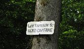 Randonnée Marche COYOLLES - en forêt de Retz_78_les rayons du Rond Capitaine - Photo 67
