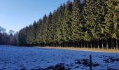 Trail Walk Daverdisse - Porcheresse Grinchi - Photo 1