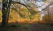 Randonnée Marche LONGPONT - en forêt de Retz_77_Longpont_Puiseux en Retz_AR - Photo 155