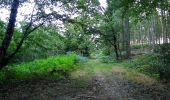 Trail Walk DAMPLEUX - en forêt de Retz_80_sur la Route Tortue et la Route Droite - Photo 34