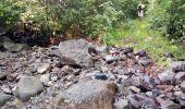 Trail Walk RIVIERE-SALEE - JOUBADIÈRE - MORNE CONSTANT - PAGERIE - Photo 50