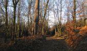 Trail Walk RETHEUIL - en forêt de Retz_76_dans les forêts de Retz et de Compiègne - Photo 14