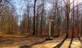 Trail Walk PIERREFONDS - en forêt de Compiègne_24_Tournantes sur le Voliard et sur la Fortelle_chaussée Brunehaut - Photo 125