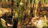 Randonnée Marche LONGPONT - en forêt de Retz_77_Longpont_Puiseux en Retz_AR - Photo 31