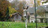 Randonnée A pied VILLERS-COTTERETS - le GR11A  dans la Forêt de Retz  - Photo 143