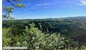Randonnée Marche CLAIRVAUX-LES-LACS - Les Pimpelards - Photo 1