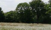 Randonnée Marche SION-LES-MINES - Boucle 16 km à Saint Aubin des Chateaux - Photo 2