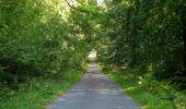 Trail Walk DAMPLEUX - en forêt de Retz_80_sur la Route Tortue et la Route Droite - Photo 232