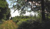 Randonnée Marche LONGPONT - en foret de Retz_ 41_Longpont_Vertes Feuilles_AR - Photo 122