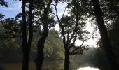 Randonnée Trail NEANT-SUR-YVEL - Autour des étangs à partir du gîte de tante Phonsine - Photo 8