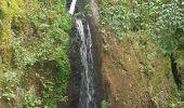 Randonnée Marche MUHLBACH-SUR-BRUCHE - Le Jardin des Fées par la cascade de Soulzbach - Photo 36