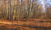 Trail On foot VIEUX-MOULIN - en forêt de Compiègne_23_la Grotte des Ramoneurs_le Mont Berny - Photo 101