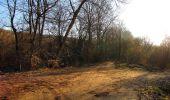 Trail Walk RETHEUIL - en forêt de Retz_76_dans les forêts de Retz et de Compiègne - Photo 19