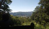 Randonnée Marche SENTHEIM - Sentheim Buchberg - Photo 6
