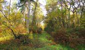 Trail Walk SAINT-JEAN-AUX-BOIS - en forêt de Compiègne_19_le Puits d'Antin_les Mares St-Louis_La Muette - Photo 172