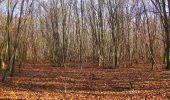 Trail On foot VIEUX-MOULIN - en forêt de Compiègne_23_la Grotte des Ramoneurs_le Mont Berny - Photo 103