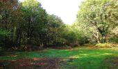 Randonnée A pied VILLERS-COTTERETS - le GR11A  dans la Forêt de Retz  - Photo 156