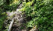 Trail Walk METZERAL - Steinabruck - Le Hohneck et ses 3 lacs Fischboedle, Altenweiher et Schiessrothried - Photo 19