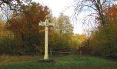 Randonnée Marche SAINT-JEAN-AUX-BOIS - en forêt de Compiègne_32_11_2019_les Tournantes de la Muette et sous la Tête Saint-Jean - Photo 150