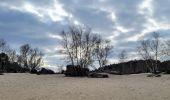 Randonnée Marche NOISY-SUR-ECOLE - Boucle les trois pignons Fontainebleau - Photo 6