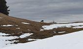 Randonnée Raquettes à neige DIVONNE-LES-BAINS - La Dole alt 1676m en raquette - Photo 21