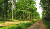 Randonnée Marche COYOLLES - en forêt de Retz_78_les rayons du Rond Capitaine - Photo 23