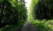 Randonnée Marche HARAMONT - en forêt de Retz_79_08_2019_vers Taillefontaine et Retheuil par les lisières - Photo 61