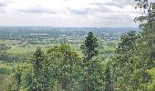 Trail Walk ERNOLSHEIM-LES-SAVERNE - 2019-05-30 Marche Mt St Michel Ernolsheim les Saverne Reel - Photo 13