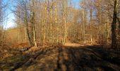 Trail Walk PIERREFONDS - en forêt de Compiègne_24_Tournantes sur le Voliard et sur la Fortelle_chaussée Brunehaut - Photo 55