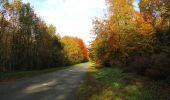 Randonnée Marche SAINT-JEAN-AUX-BOIS - en forêt de Compiègne_32_11_2019_les Tournantes de la Muette et sous la Tête Saint-Jean - Photo 182