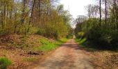 Randonnée A pied VILLERS-COTTERETS - le GR11A  dans la Forêt de Retz  - Photo 85