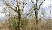 Randonnée Marche Ottignies-Louvain-la-Neuve - IR-226_Rofessart-Raccourci - Photo 2