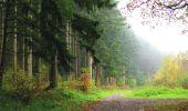 Randonnée A pied VILLERS-COTTERETS - le GR11A  dans la Forêt de Retz  - Photo 129