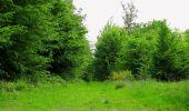 Randonnée Marche COYOLLES - en forêt de Retz_78_les rayons du Rond Capitaine - Photo 6